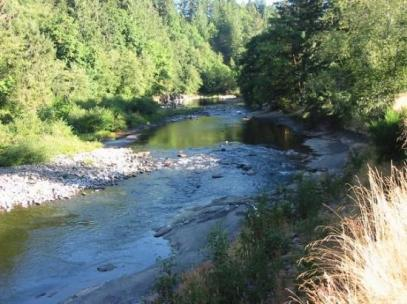 siletz-river-moonshine